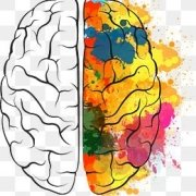 Art and your brain - Increase your brain power at the Creativity Cafe